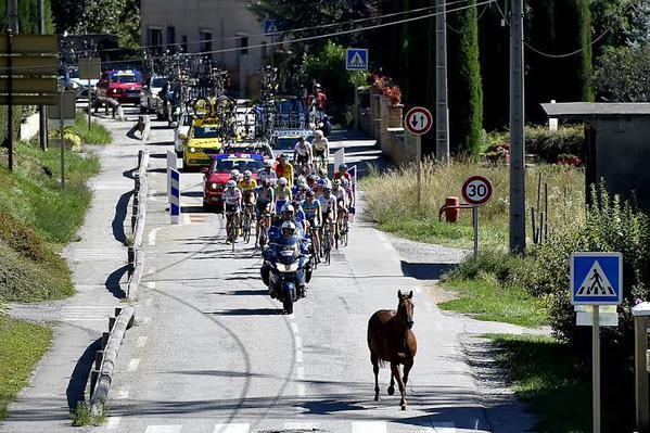 Um cavalo resolveu invadir a estrada e correr na frente do pelotão Foto: ©Thibaut Vianney / Agence Zoom
